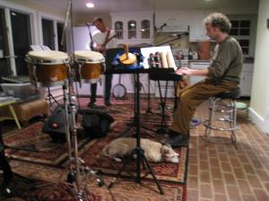 Cecilia the Band Dog